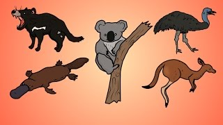 Draw Five: How to Draw Australian Animals