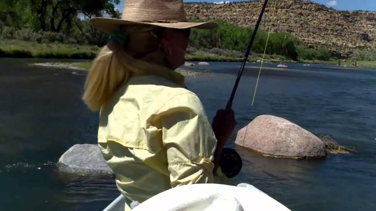Fly fishing the san juan river new mexico june 10 2014 for Fish heads san juan