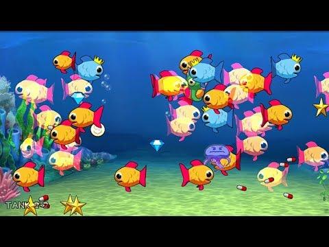 King Guppy Insaniquarium For Android Feed Fishes! Fight Aliens! Tank 2-2 #InsaniquariumforAndroid