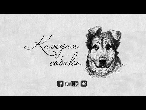 Док. фильм Каждая собака. ТРЕЙЛЕР