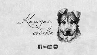 """Док. фильм """"Каждая собака"""". ТРЕЙЛЕР"""