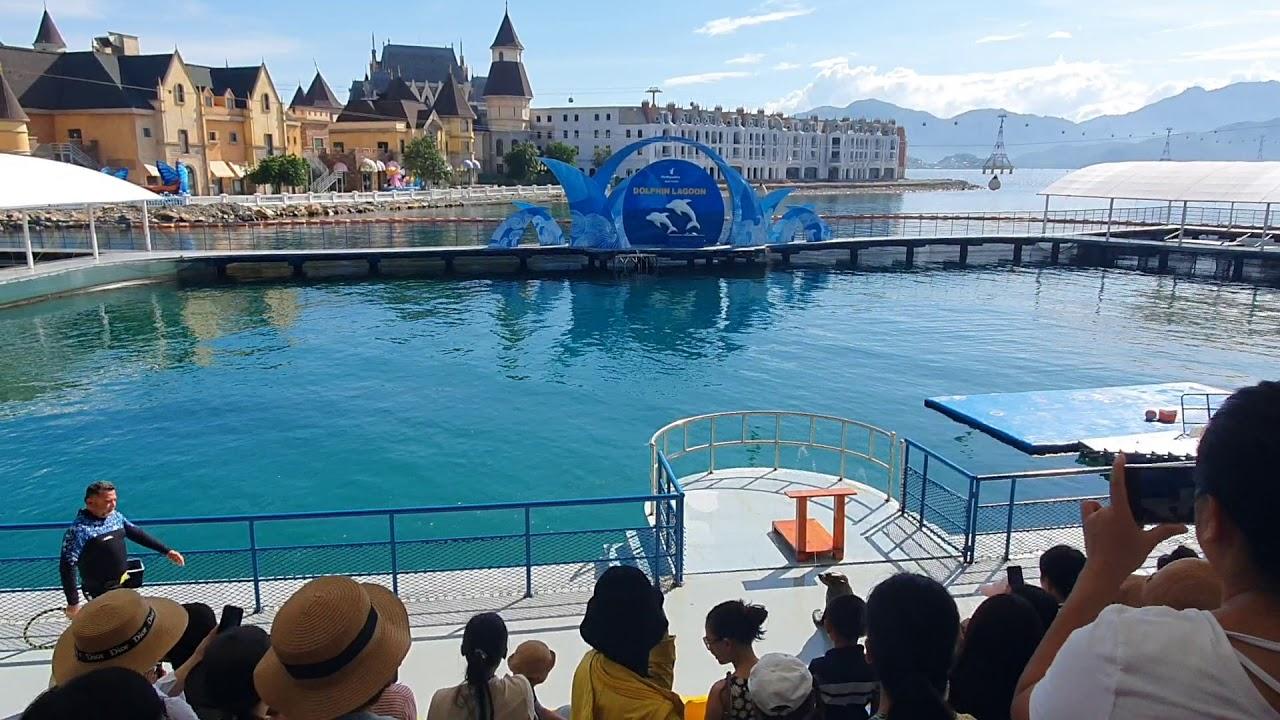Xiếc Hải Cẩu Vinpearl Nha Trang - YouTube