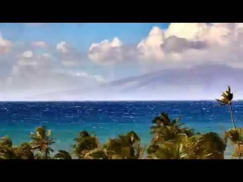 Maui Wind & Waves  (4k)