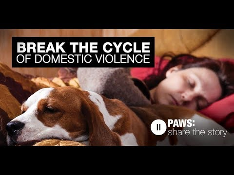 PSA Commercial Animal Abuse in Relation to Family Violence