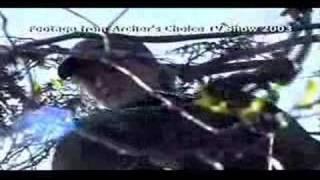 Manitoba Hunting - Canadian Sub Arctic Hunting Promo