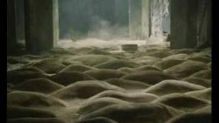 Сумерки - Зона Свободы