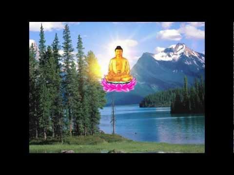 Kinh 48 Lời Nguyện Của Đức Phật A Di Đà-Thầy Thích Trí Thoát tụng