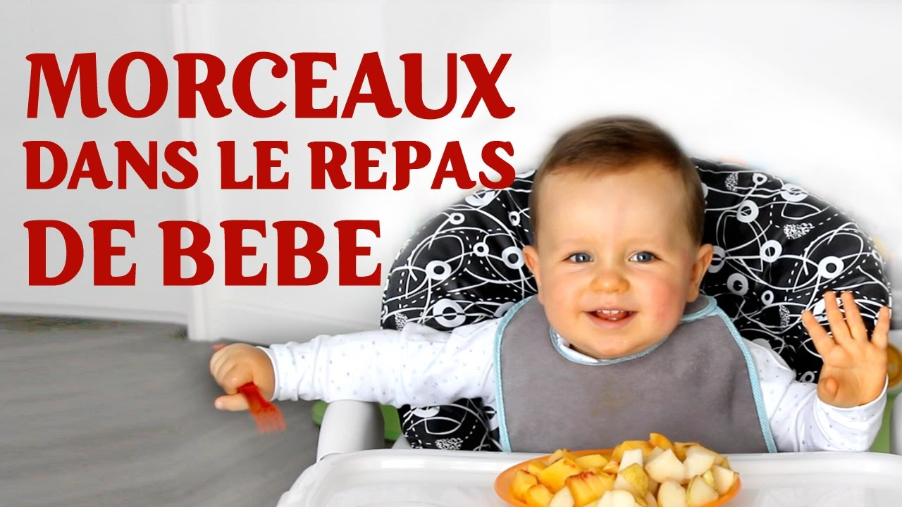 alimentation bébé 10 mois morceaux
