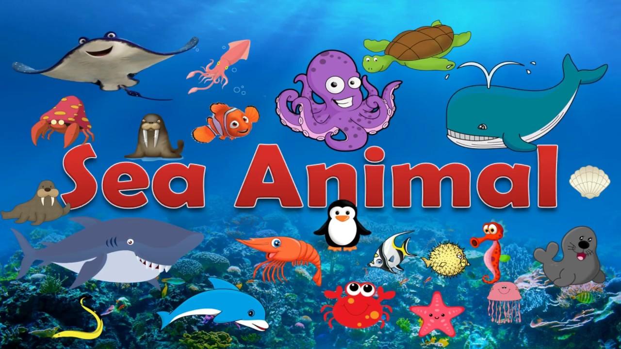 เร ยนร คำศ พท ภาษาอ งกฤษเก ยวก บส ตว ทะเล Sea Animal ส อการสอนภาษาอ ง
