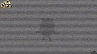 Persona 4 Golden: Teddie's Secret Midnight Channel.