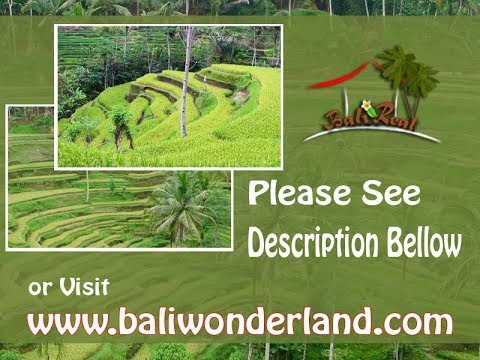Land for sale in Ubud , affordable property in Bali Indonesia