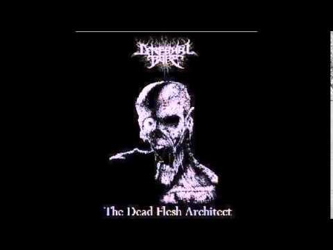 cerebral bore the dead flesh architect
