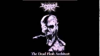 Cerebral Bore - The Dead Flesh Architect (FULL EP)