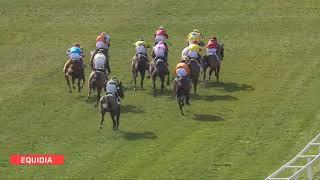 Vidéo de la course PMU PRIX DE RAMATUELLE