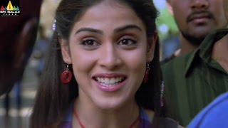 Sye Movie Scenes  Genelia About Her Love  Telugu Movie Scenes  Sri Balaji Video