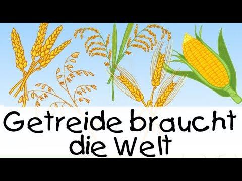 Download Getreide braucht die Welt || Kinderlieder zum Lernen