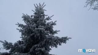 Зимняя сказка. winter.