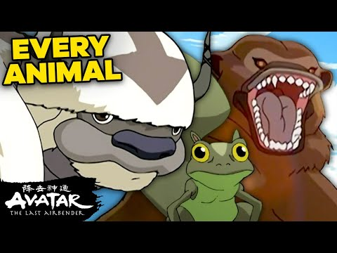 "25 Animals from ""Avatar: The Last Airbender"" I Wish Were Real 🐧 NickRewind"