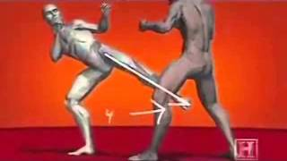 HUMAN WEAPON KARATE TECHNIQUES.wmv(all about karate techniques on Human Weapon., 2013-01-01T07:14:44.000Z)