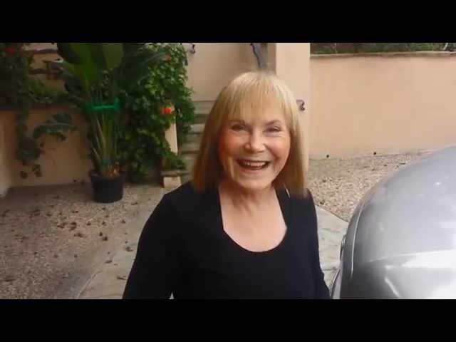 Fisler La Jolla Painter Testimonial