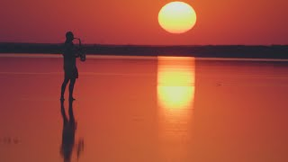 Download Syntheticsax - In The Rays of Sunset (saxophone sound recorded live at sunset) 4k video