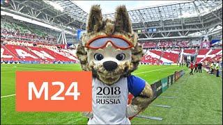 Москва 24 приглашает принять участие в шоу прогнозов ЧМ-2018 - Москва 24