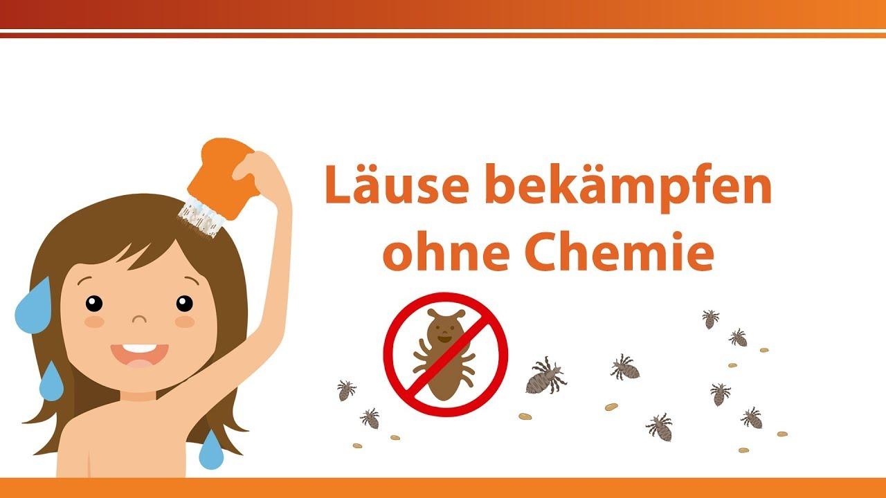 Kopfläuse Hausmittel Läuse Ohne Läuse Mittel Chemie Bekämpfen