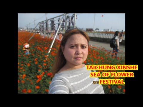 TAICHUNG XINSHE SEA OF FLOWER FESTIVAL | NOV 13 2016 | VLOG