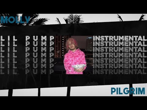 [FREE DOWNLOAD] Lil Pump - Molly (Instrumental) Re-prod. Pilgrim Beats