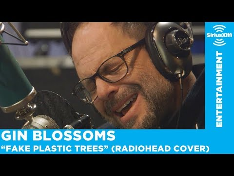 """Gin Blossoms Perform """"Fake Plastic Trees"""" (Radiohead Cover)"""