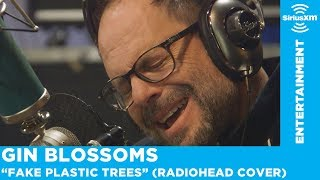 "Gin Blossoms Perform ""Fake Plastic Trees"" (Radiohead Cover)"