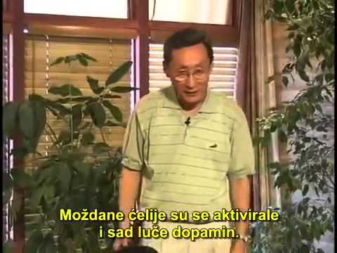 5. Autoimuna bolest - Dr Šang Li