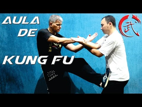 WING CHUN Kung Fu do Filme O Grande Mestre, Aprenda Técnica de Defesa de Soco no Rosto e Abdomen