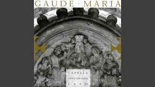 Salve Mater Misericordiae (Hymnus)