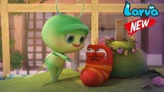 Larva 2018 Cartoon Full Movie   Episodes Mayfly    Larva Terbaru New Season