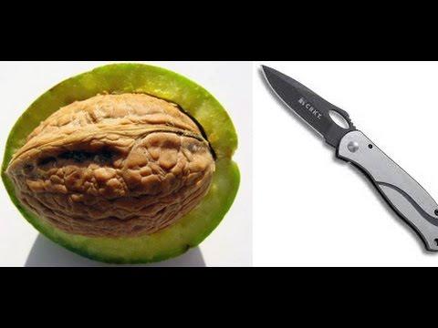 Как чистить зеленые грецкие орехи