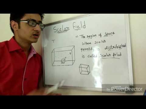 Scalar Field
