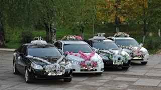 Стрельба, спец.сигналы, кортеж гуляй свадьба Красноярск (ч.2)