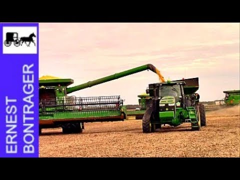 Harvesting 200 Acres Of Soybeans In 2 Hours