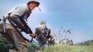 U.S. Marines' First Test Against Japanese Defenses on Okinawa