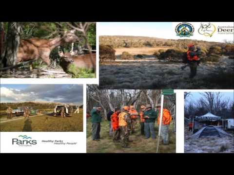 Deer Management in Victorian Alpine National Parks with Dan Brown (Parks Victoria)