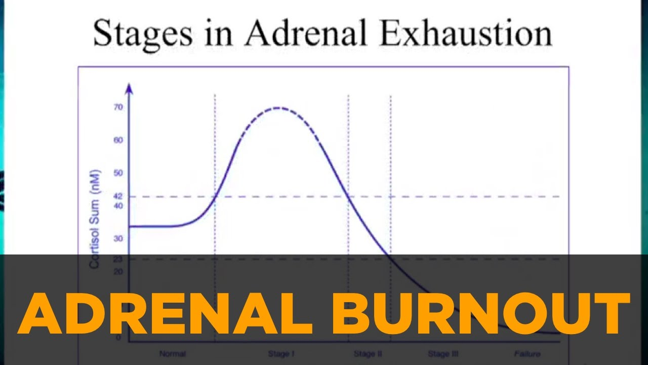 how to support adrenal fatigue