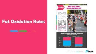 WT3 Part1 - Fat Oxidation Rates