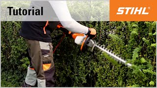 Electric Hedge Trimmer Cutting Technique Zium Cutting Stihl Hse