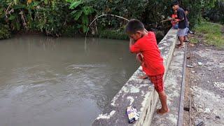 Umpan Kodok Sawah Dapat Lele Tiongkok Monster || Mancing di Sungai Ciaur