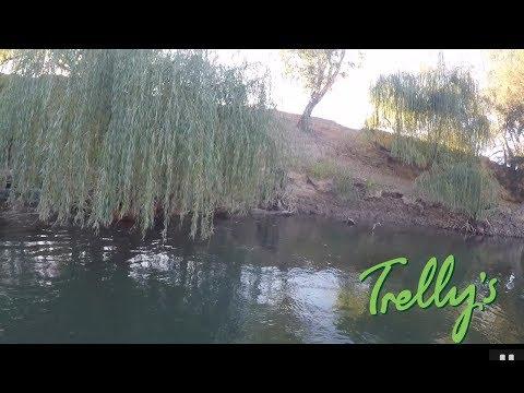 Crazy Murrumbidgee River Fishing, Wagga Wagga