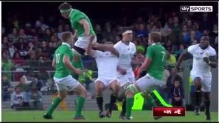 Rugby Cj Stander Red Card