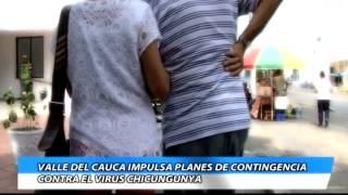 Valle del Cauca impulsa planes de contingencia contra el virus Chikungunya
