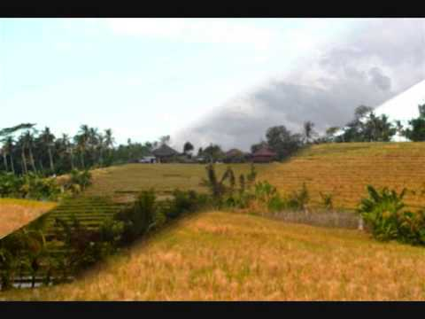 Property for sale in Bali, amazing land for sale in Tabanan Bali - TJTB056