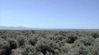 Sunstones in the Oregon Desert